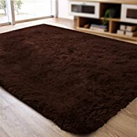 ACTCUT Super Soft Indoor Modern Shag Area Silky Smooth Rugs Fluffy Rugs Anti-Skid Shaggy Area Rug Dining Room Home Bedroom Carpet Floor Mat Mat 2' x 3', (Coffee)