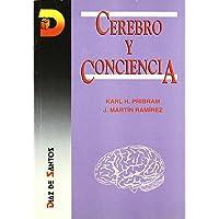 Cerebro y conciencia