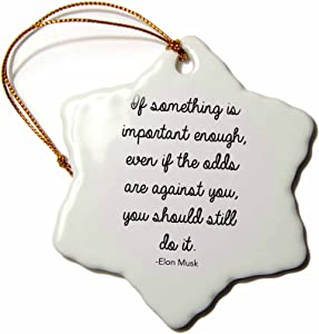 3D Rose Elon Musk Inspirational Quote Snowflake Ornament, 3""