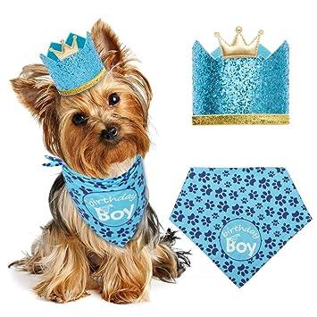 EXPAWLORER Dog Birthday Bandana With Crown Hat