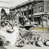 Mermaid Avenue 2 (Vinyl)