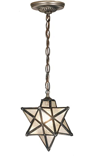 9 Inch W Moravian Star Mini Pendant Outdoor Lighting