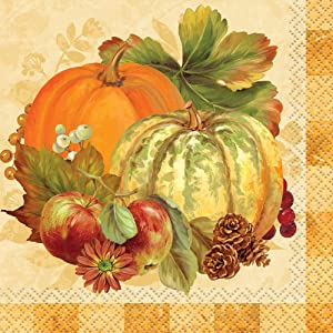 Pumpkin Harvest Fall Beverage Napkins, 16ct