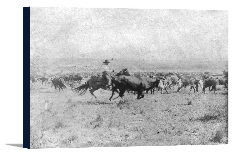 カウボーイon HorsebackカットA CowからThe Herd写真 36 x 24 Gallery Canvas LANT-3P-SC-5854-24x36 36 x 24 Gallery Canvas  B0184A35JK