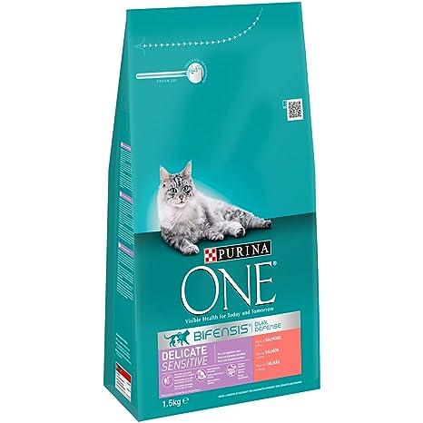 Purina ONE Bifensis Pienso para Gatos con la Digestión Sensible Salmón y Cereales 6 x 1