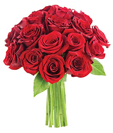 Buy Shafire Artificial Rose Flower Bunch Bouquet Red 18 Roses Online At Low Prices In India Amazon In See more ideas about flower painting, flower art, floral art. buy shafire artificial rose flower