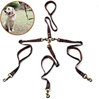 Pikaon Double/Triple Dog Leash with Traffic Handle for Walking 1/2/3 Dogs and up to 150 lbs Each