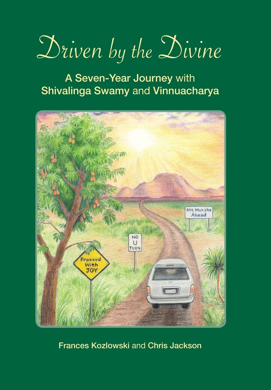 Download Driven by the Divine: A Seven-Year Journey with Shivalinga Swamy and Vinnuacharya ebook