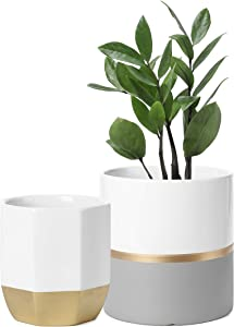 POTEY 052301 Ceramic Plant Pots Indoor Set of 2 - Modern Large Cylinder Planter + Medium Octagon Plant Pot, White Grey Golden Decorative Detailing Containers for Aloe Plants Flower (6.1 inch + 5 inch)