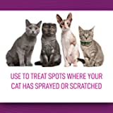 Comfort Zone Spray & Scratch Control Cat Calming