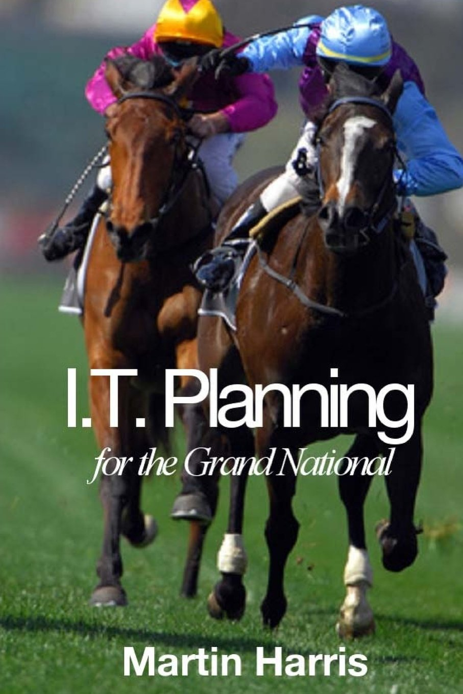 Download IT Planning for the Grand National pdf epub
