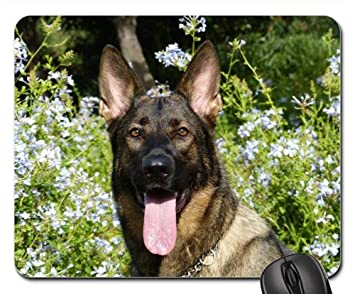 Amazon Com Mouse Pads German Shepherd Dog Pet Happy Funny Face