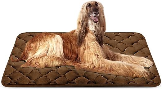 Hero Dog Cama Colchoneta Perro Grande Lavable, Cojines para Mascotas Antideslizante Vellón Almohadilla Suave 120x85 cm (Café XL): Amazon.es: Productos para mascotas