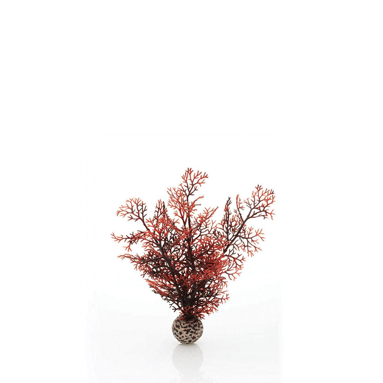biOrb Sea Fan Crimson Medium