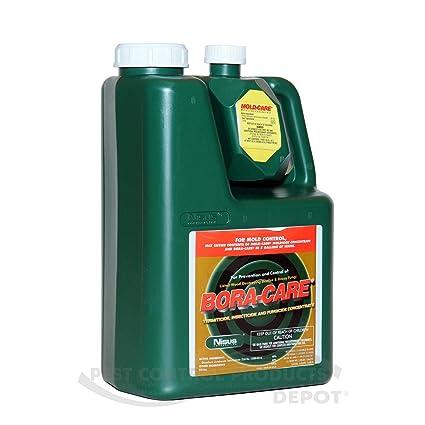 Bora Care with Mold Care 1 Gallon