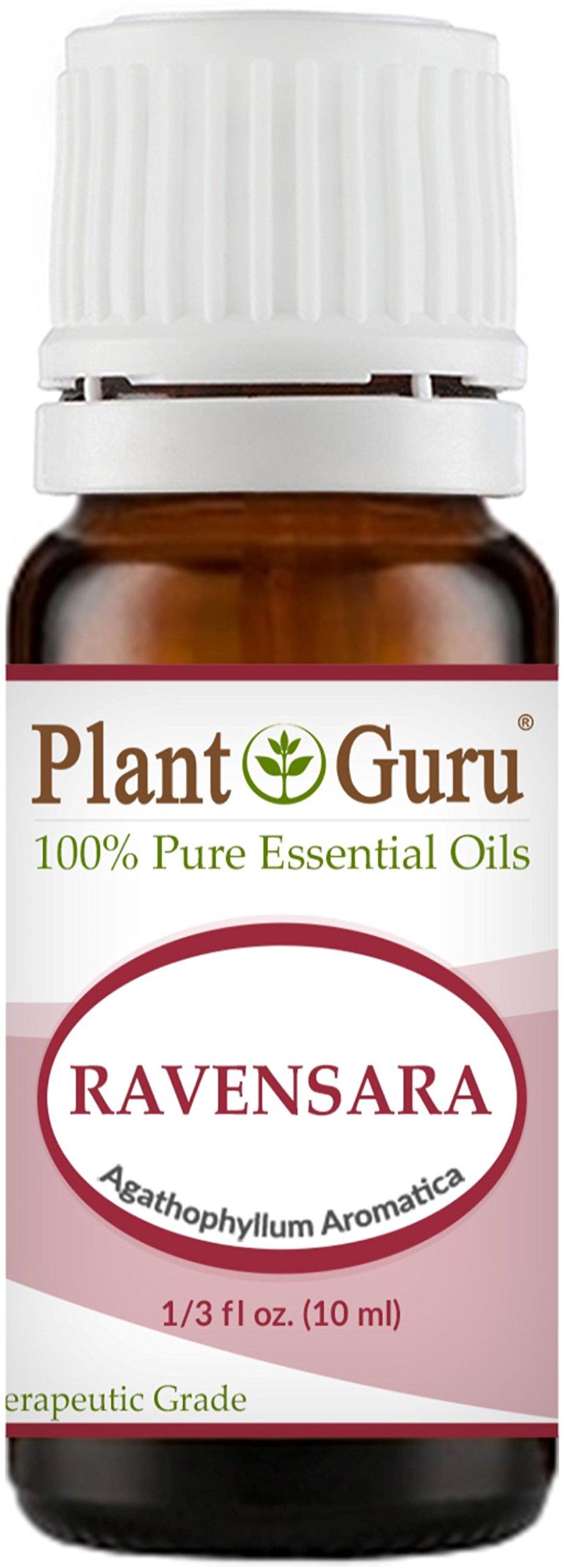 Wild Ravensara Essential Oil (Agathophyllum Aromatica Madagascar) 10 ml. 100% Pure Undiluted Therapeutic Grade.