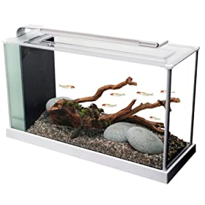 Fluval Spec V Aquarium Kit in White
