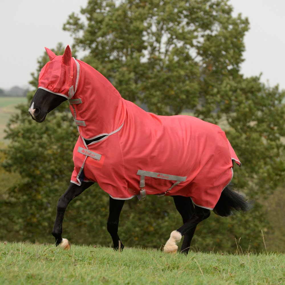 Bucas Freedom Pony Full Neck Fly Rug 3ft9 Paradise Pink