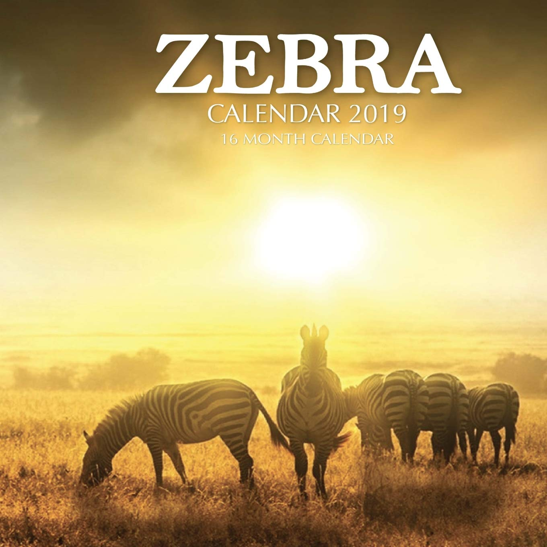 Year Calendar 2019-16 Zebra Calendar 2019: 16 Month Calendar: Mason Landon