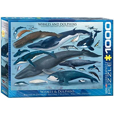 EuroGraphics Whales and Dolphins Puzzle (1000-Piece): Toys & Games