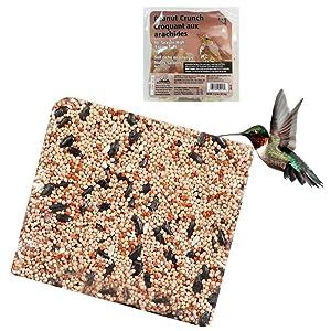 All Season Suet Wild Bird Food Cake Treat 11.25 oz Heath Outdoor Peanut Crunch
