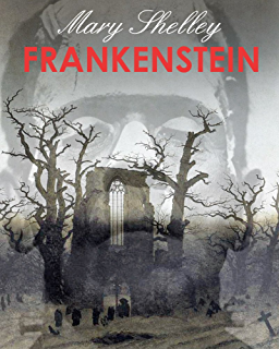 Frankenstein  a new reality    The Book Prefabricados Cordero Ltda  Essay on the Human Spirit in Frankenstein and Picture of Dorian Grey