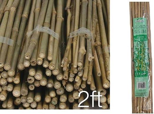 80 x cañas fuerte bambú natural bambú madera caña valla del jardín ...