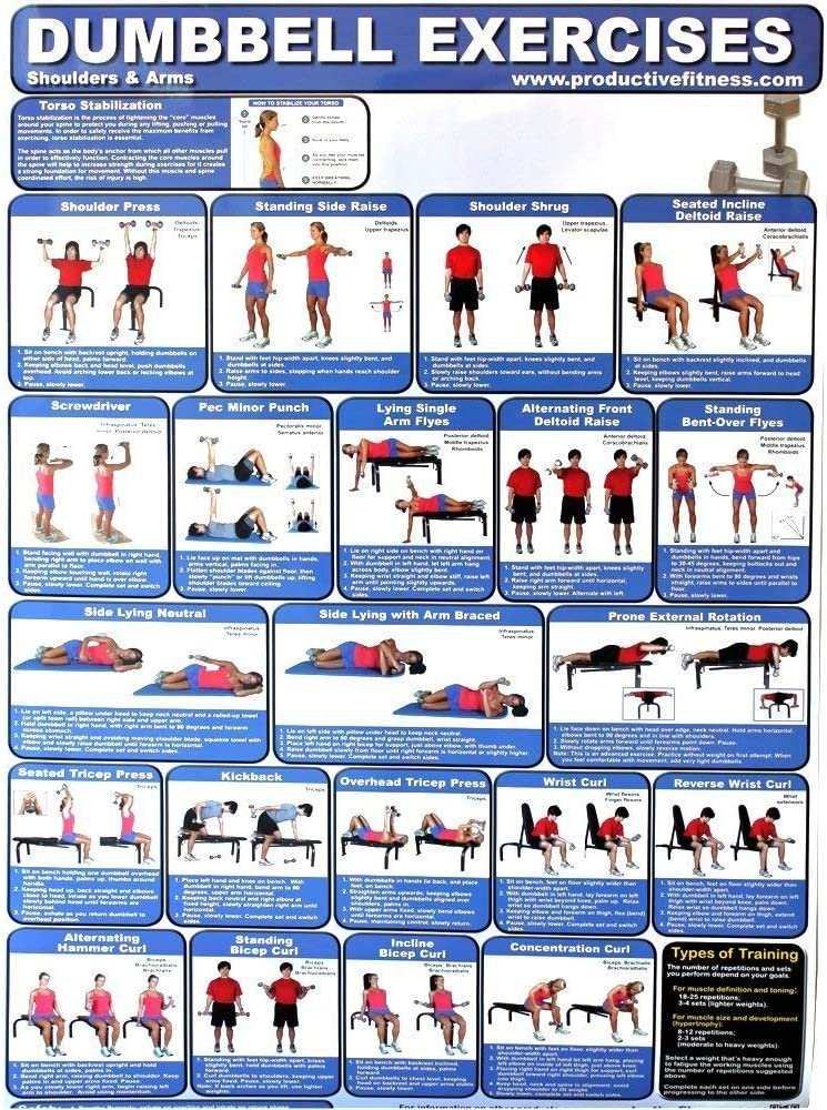 Amazon Com Productive Fitness Products Laminated Poster Dumbbell Exercises For At Home Use Upper Body Fitness Charts And Planners Sports Outdoors