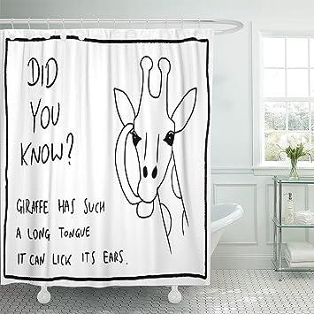 Emvency Stoff Duschvorhang Vorhang Mit Haken Witzige Tier Fakten