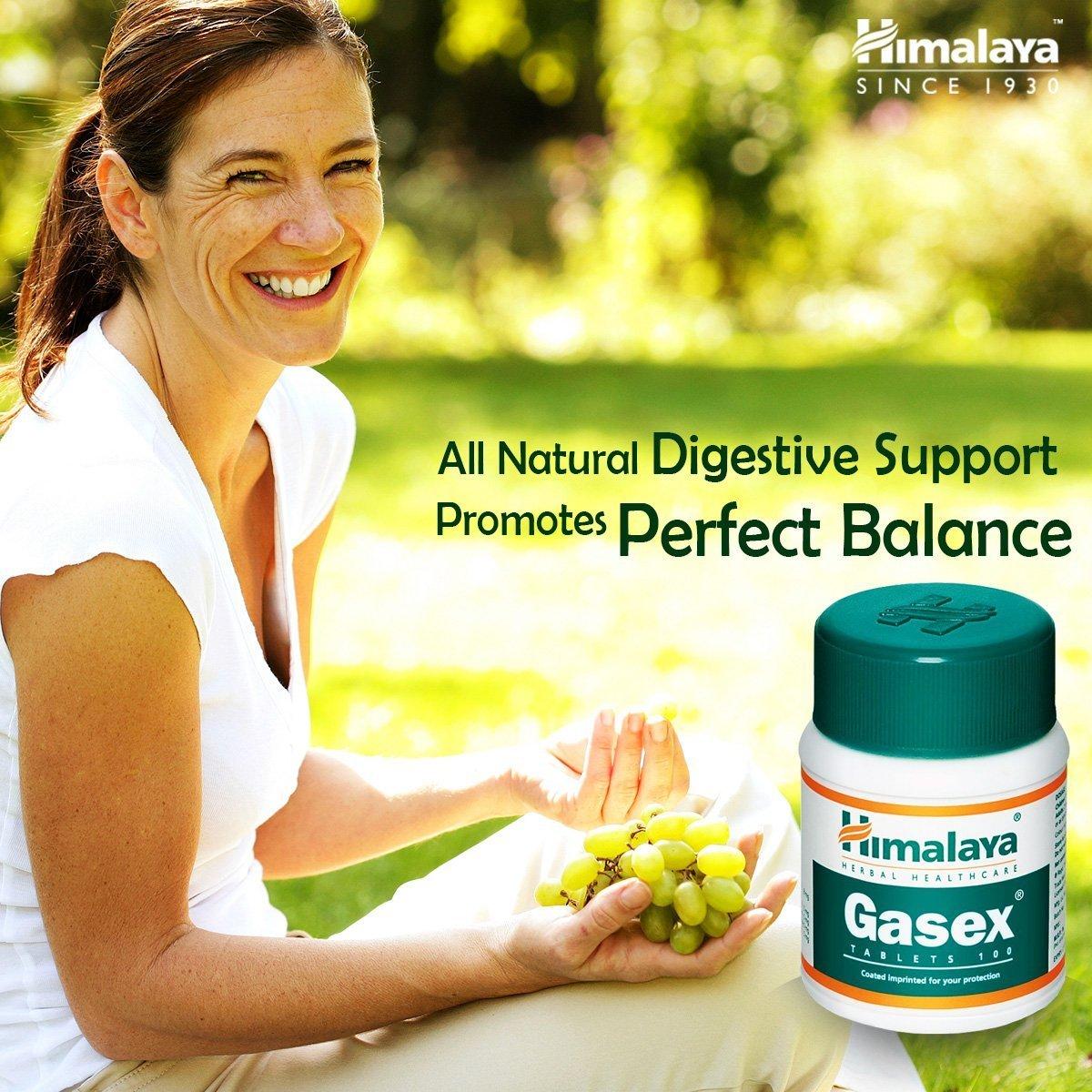 Gasex, Soporte Digestivo Natural   Antiflatulento, alivia el malestar estomacal y la hinchazón   100 tabletas sin gluten de Himalaya (1-Pack)