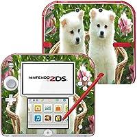 Colección 146, Custom Consola Nintendo DS Lite, 3DS