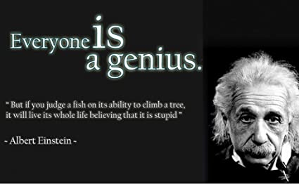 Amazon Com 12 X 18 Xl Poster Albert Einstein Quote Everyone Is A