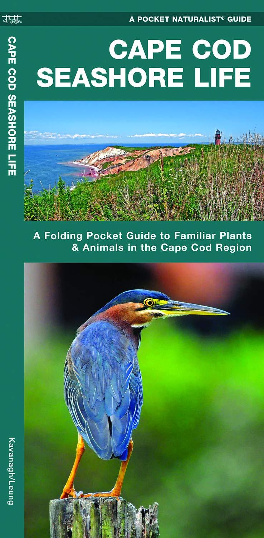Download Cape Cod Seashore Life: A Folding Pocket Guide to Familiar Plants & Animals in the Cape Cod Region (A Pocket Naturalist Guide) PDF