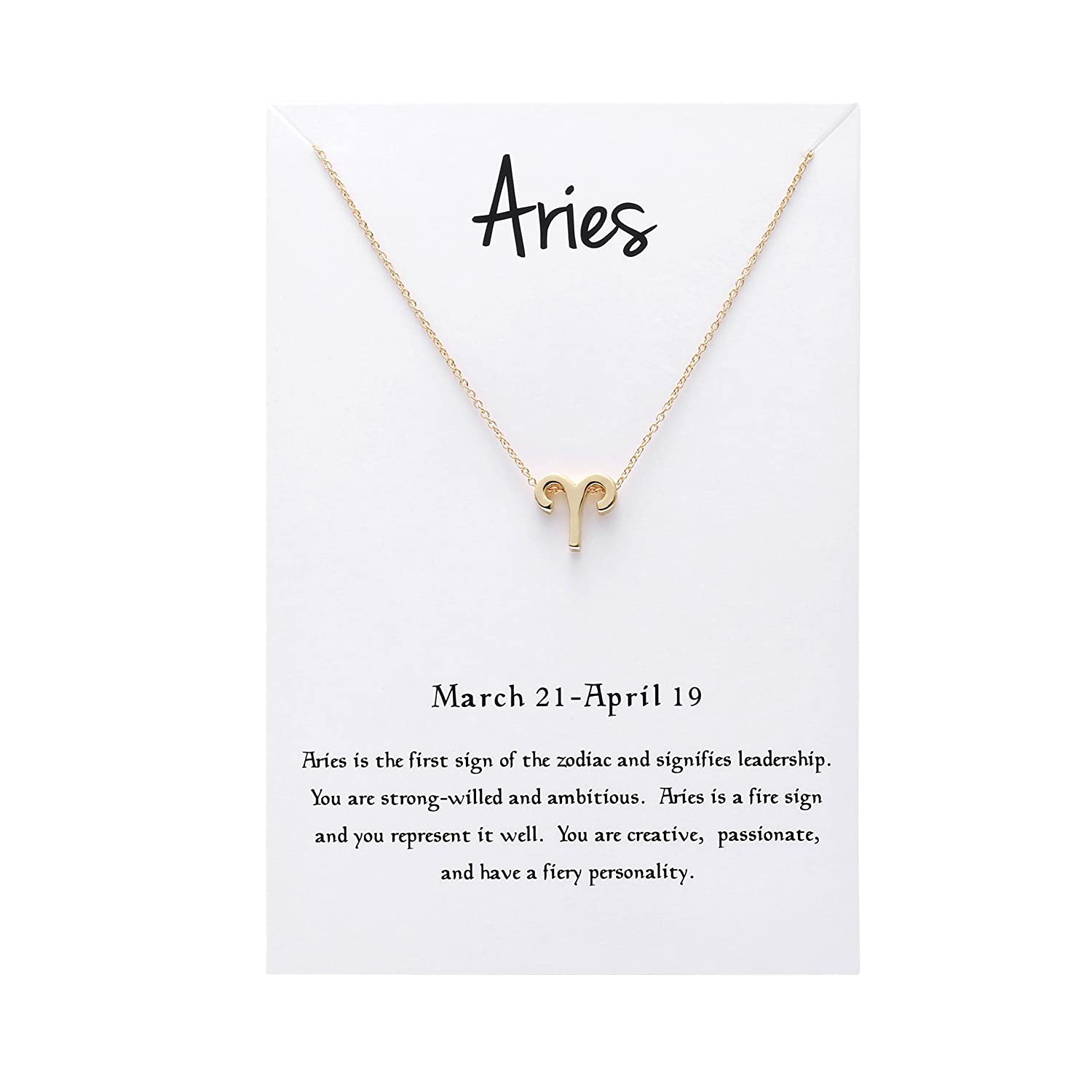 Snowpra 12 Constellation Pendant Necklace Astrology Gold Tone Chain with Message Card DK-003-Aquarius
