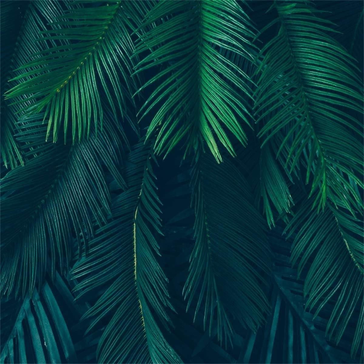 YEELE 10x10ft Dark Green Jungle Leaves Backdrop Tropical Safari Themed Birthday Photography Background Luau Theme Party Summer Hawaiian YouTube Videos Kids Adults Portrait Photobooth Props Wallpaper