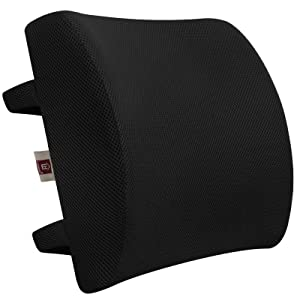 LOVEHOME Memory Foam Lumbar Support Back Cushion with 3D Mesh