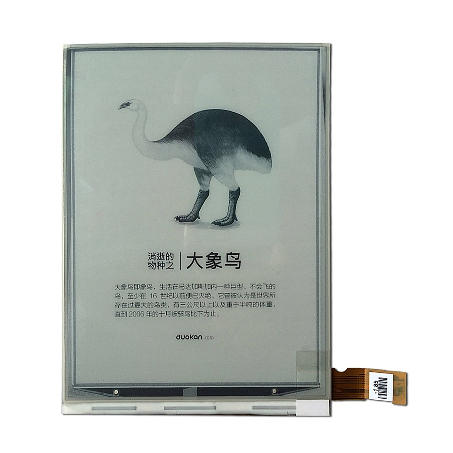 New Replacement LCD Screen for Amazon kindle 3 / KINDLE KEYBOARD D00901 / KINDLE KEYBOARD 3G Ebook Ereader Screen Repair Replacement Part E-ink LCD Display Panel ED060SC7(LF) by XSRUPB (Image #1)