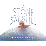 A Stone Sat Still: (Environmental and Nature Picture Book for Kids, Perspective Book for Preschool and Kindergarten…