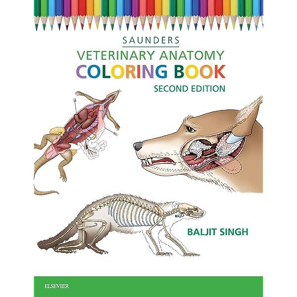 Veterinary Anatomy Coloring Book: 9781455776849: Medicine & Health Science  Books @ Amazon.com