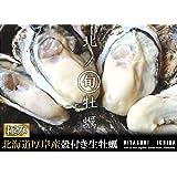 【北海道厚岸産 生牡蠣 殻付き 希少な三年牡蠣 3Lサイズ 10個 (150g~200g/1個) 軍手・カキナイフ付】満天☆青空レストランでご紹介された厚岸の極上牡蠣! 世界中の食通をうならせる海のミルク。創業70年を誇る厚岸の牡蠣漁師より直送します。時にはギフトに、時には自分へのご褒美をちょっと贅沢に。 (10個)