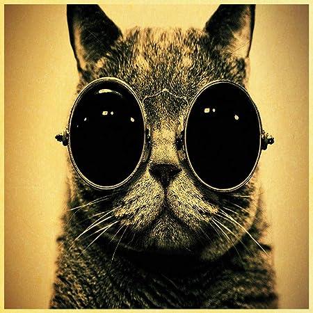 zxddzl Cartel Retro Gato Gafas de Sol Mural decoración del ...