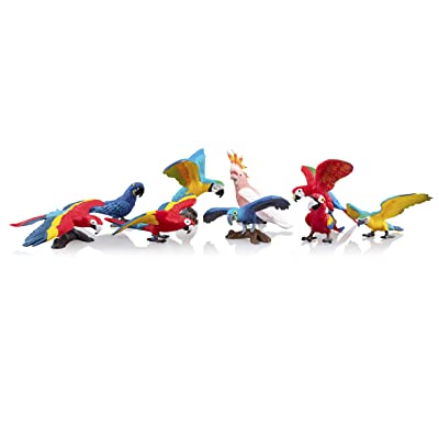 "TOYMANY 9PCS Realistic Parrot Birds Figurines, 2-4"" Plastic Macaw Animals Figures Set Includes Cockatoo,Scarlet Macaw, Educational Toy Cake Toppers Christmas Birthday Gift for Kids Toddlers: Toys & Games"