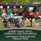 EPO Equine Formula 30 Servings Equine Endurance