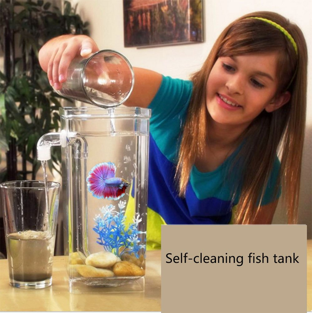 Fun Self Cleaning Fish Tank