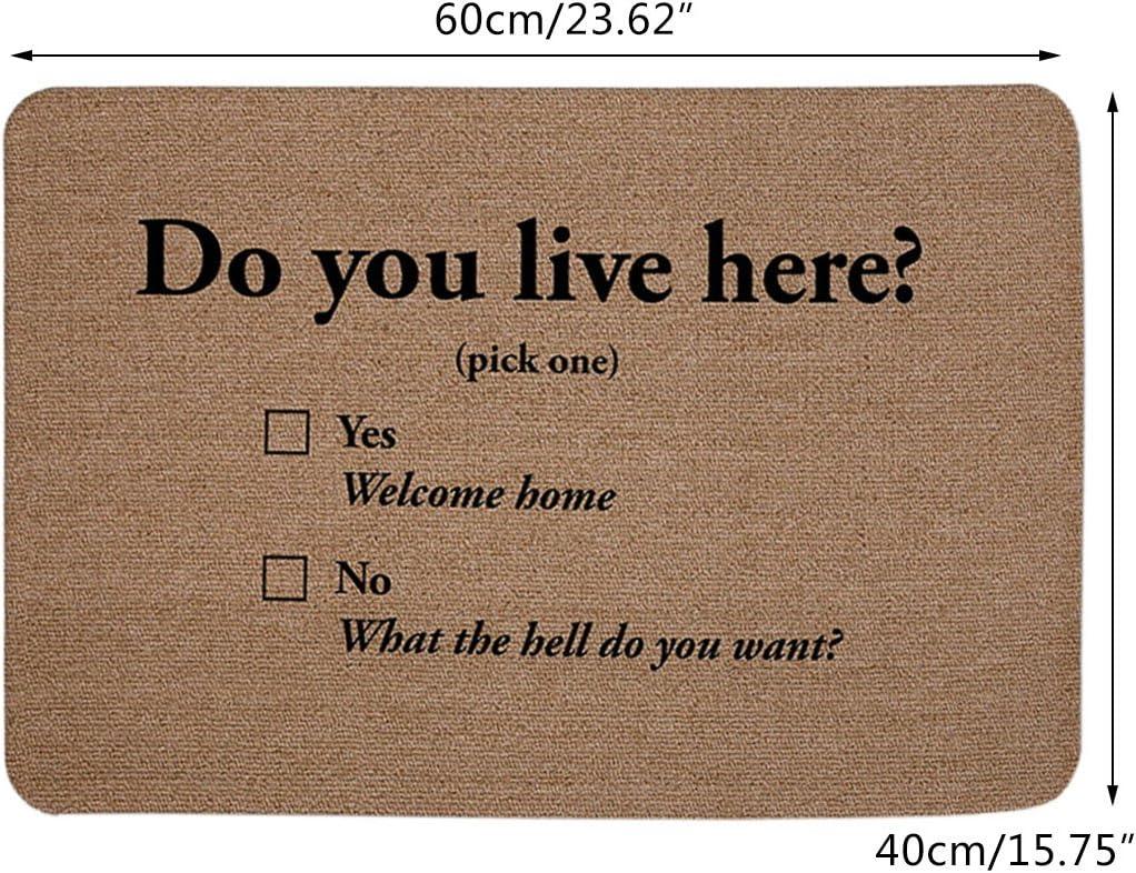 Zhaoke Paillasson Antid/érapant Absorbant Tapis dEntr/ée Humour Motif Do You Live Here 40x60cm