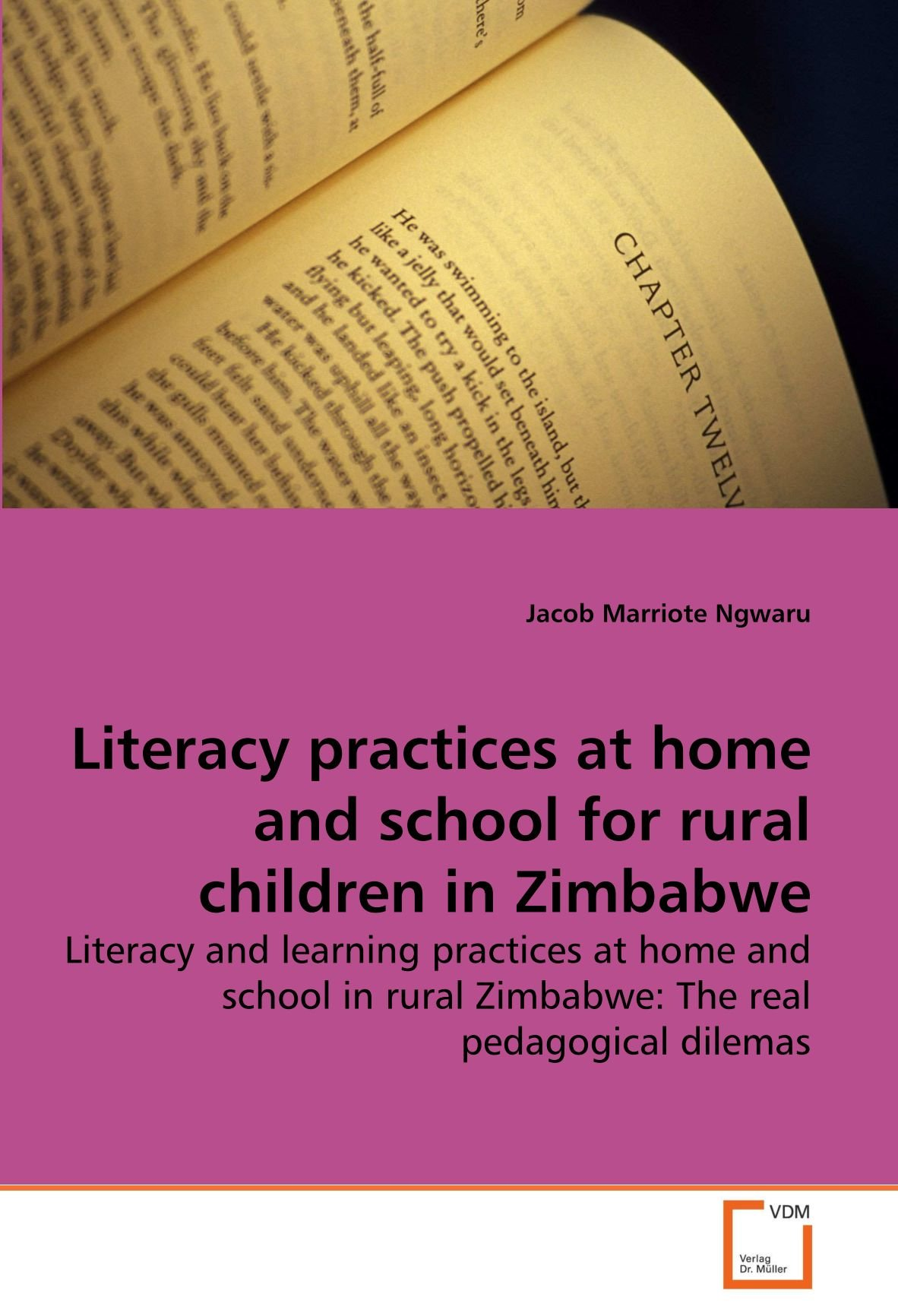 Download Literacy practices at home and school for rural children in Zimbabwe: Literacy and learning practices at home and school in rural Zimbabwe: The real pedagogical dilemas pdf
