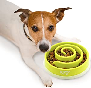 Slow Feed Dog Bowl Slowly Bowly by 2PET. Fun Interactive Dog Dish for Fast Eaters. Prevent Bloating. Fun to Use Dog Bowl. Cat Feeder Friendly. [Skid Protection Upgraded]