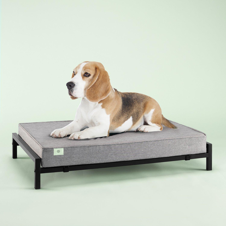 Zinus OLB-MPB-3728 Pet Bed Mattress Set, Medium