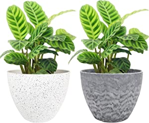 LA JOLIE MUSE Flower Pots Outdoor Indoor Garden Planters,Plant Containers with Drain Hole (8.6 inches, 1 Pack)