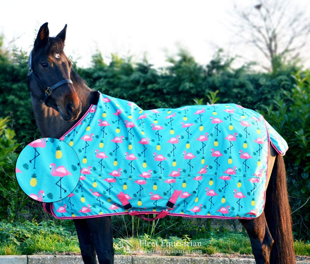 Teal Provence bluee 63 inch Teal Provence bluee 63 inch Y-H Hy Flamingo Lightweight Turnout Rug Teal Provence bluee